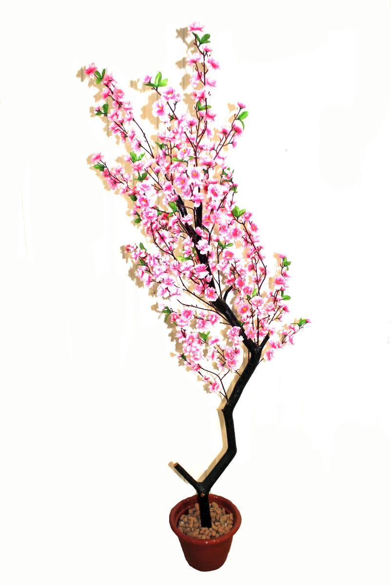 Жизни купить, сакура заказ цветов г.елизово